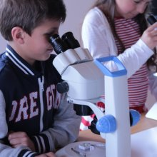Фото - микроскоп Optika (Italy) Микроскоп Optika LAB 10 20x-40x Bino Stereo