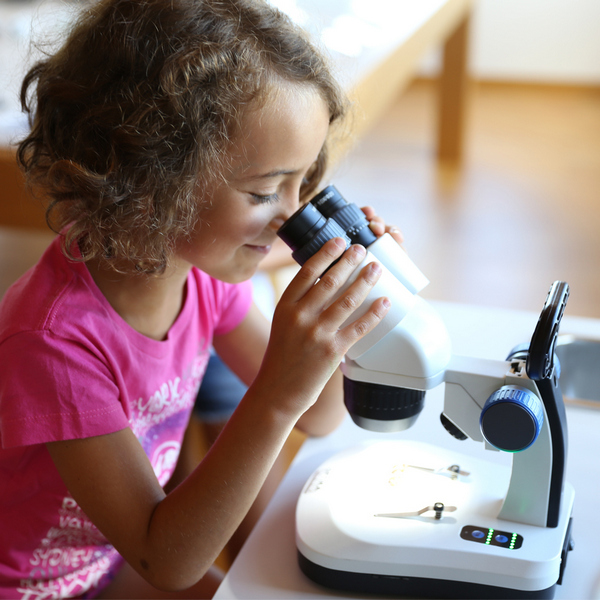 Фото - микроскоп Optika (Italy) Микроскоп Optika SFX-34 10x-30x Bino Stereo